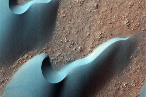 """Most of the dunes visible in this observation are barchan dunes. On barchan dunes, the steep slip face is between two """"horns"""" that point downwind."""