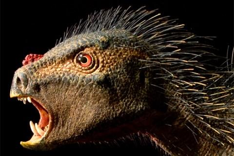 top10_newspecies_dinosaur