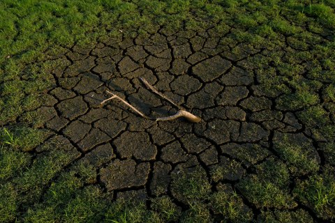 image: A dead branch sits in the cracked earth near the Morse Reservoir, north of Indianapolis, July 22, 2012.
