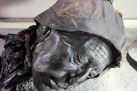 The Tollund Man hanged with a leather cord and cast into a Danish bog 2,300 years ago.