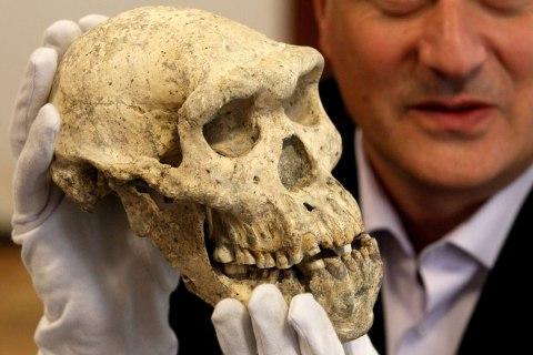 Pre-human skull in Georgia