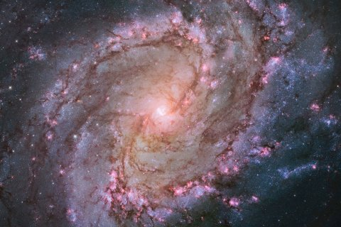 The barred spiral galaxy M83, also known as the Southern Pinwheel, is seen in a NASA Hubble Space Telescope mosaic released Jan. 9, 2014.