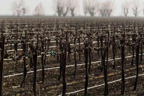140214-california-drought